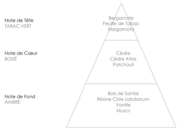 ABEL Pyramide Olfactive