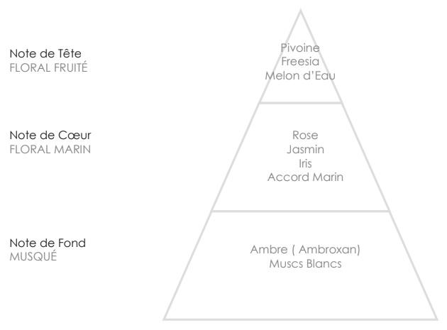 ELSA Pyramide Olfactive