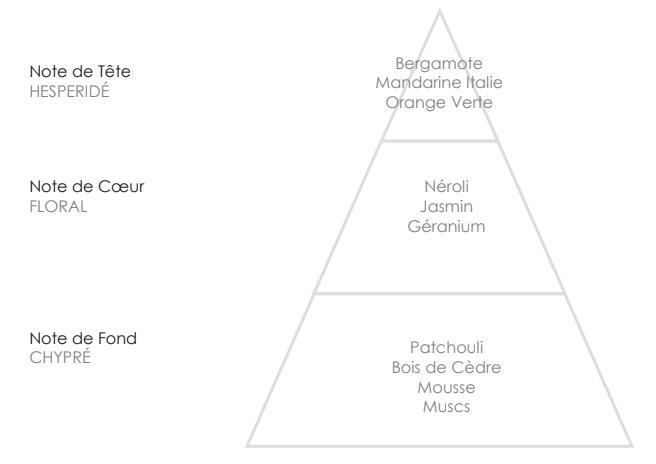 GASPARD Pyramide Olfactive