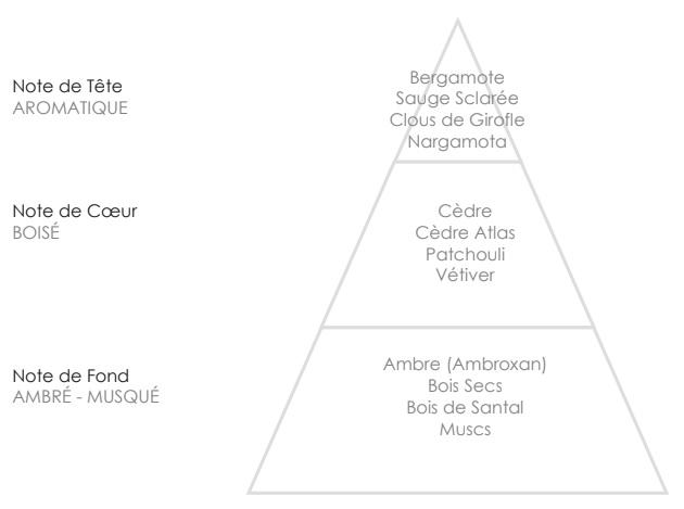 JOAO Pyramide Olfactive