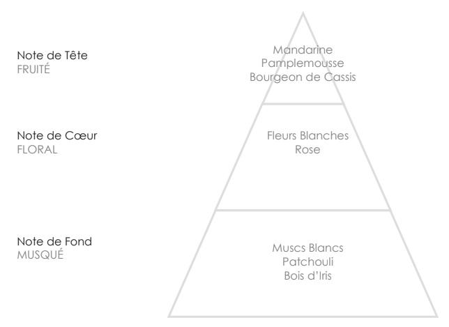 MARIE Pyramide Olfactive