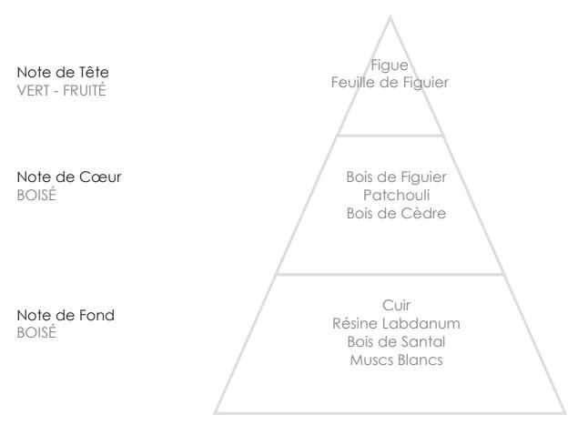 MARTIN Pyramide Olfactive