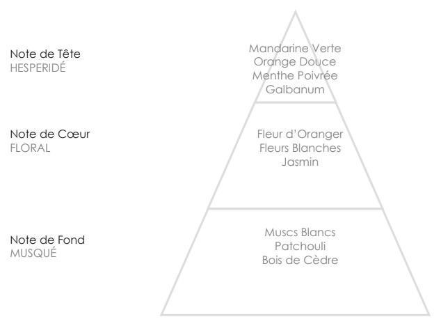 SOPHIE Pyramide Olfactive